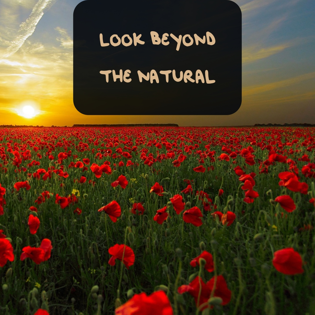 Look Beyond the Natural
