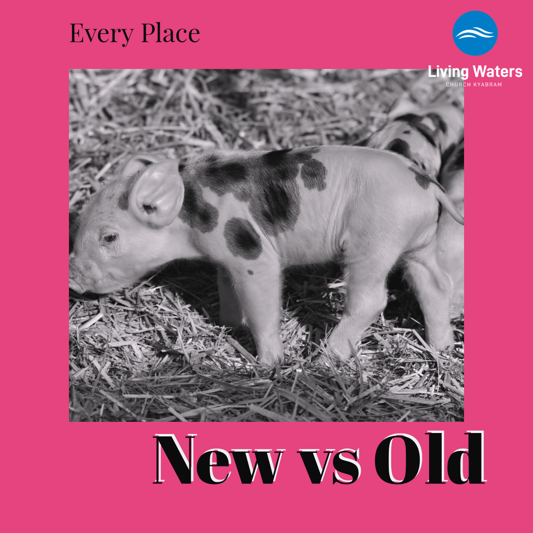 Every Place – New vs Old